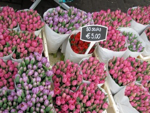 Tulips at the Amsterdam flower market
