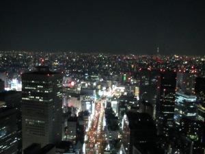 Tokyo Park Hyatt view